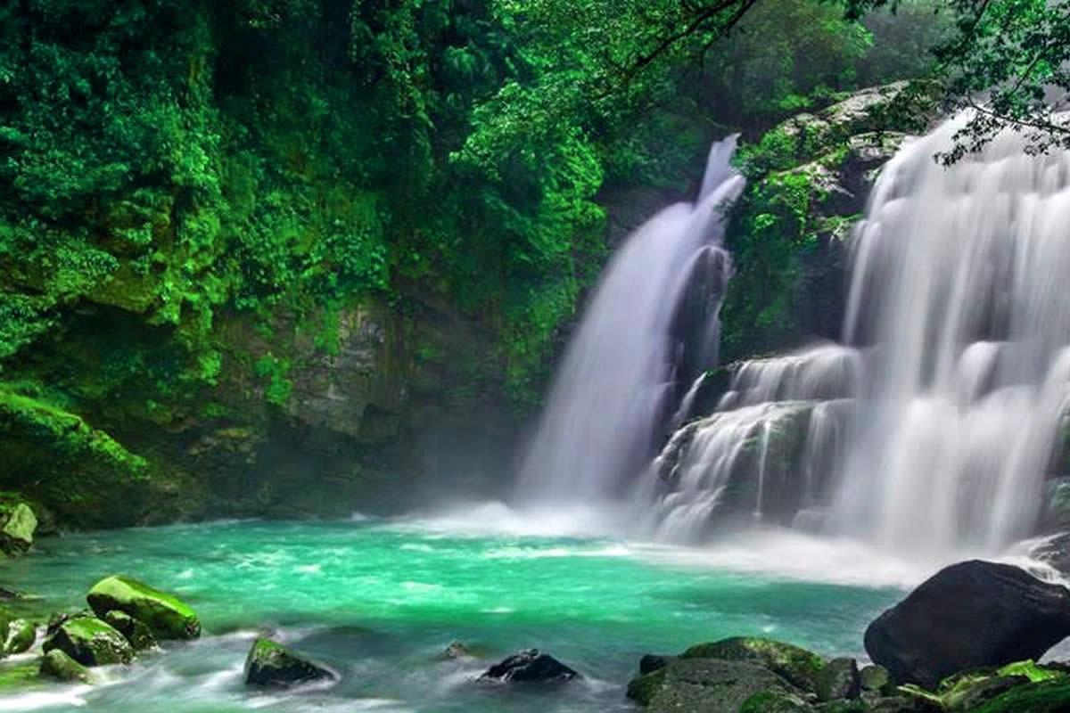 Maui Nature Tours