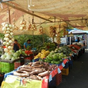 Plenty of fresh fruits and veggies! Quepos farmers market is amazing! tours and activities offered at EOC