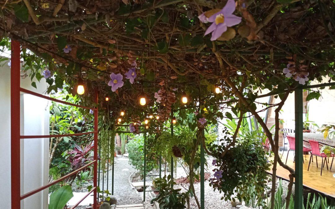 Our Secret Garden